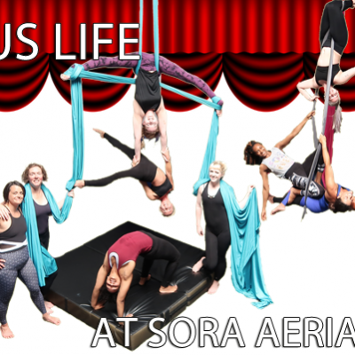 I Joined The Circus In Real Life   Sora Aerial Arts
