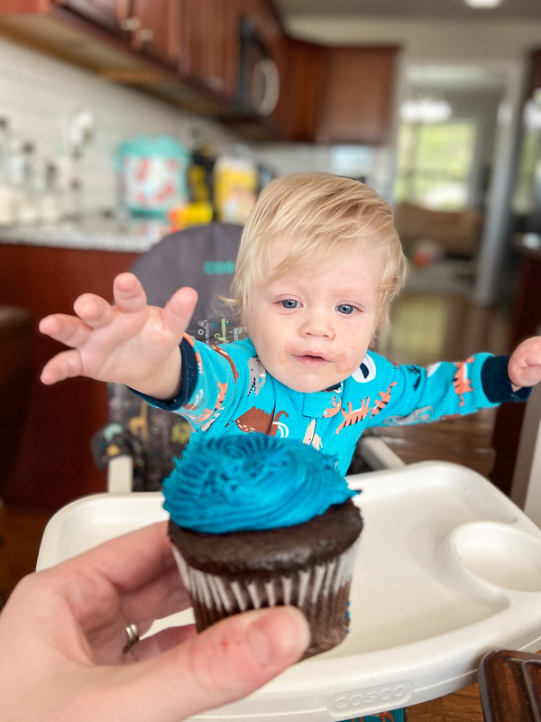Cohen turns ONE!